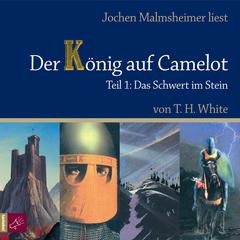 Der König auf Camelot - Teil 1: Das Schwert im Stein